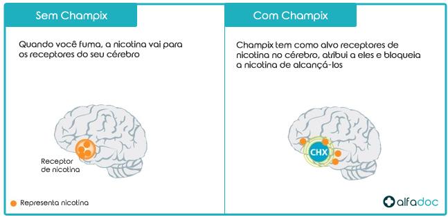 Champix-Varenicline---Como-funciona